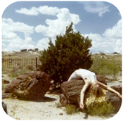 Jodi Stewart laying over a log