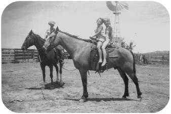 Jodi Stewart on a horse